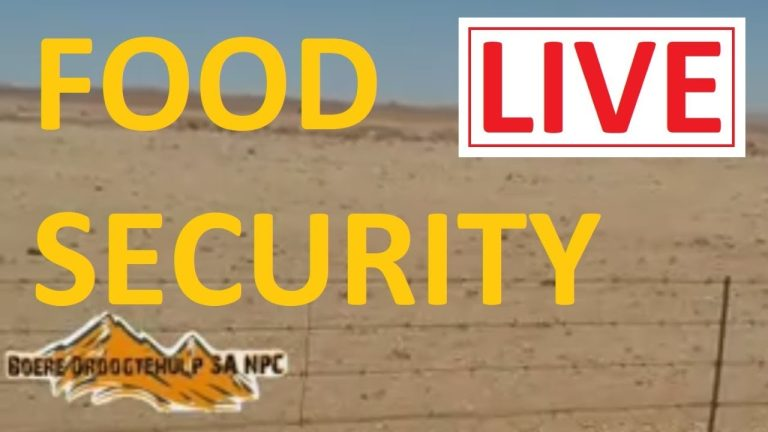 LIVE: Food security in South Africa – February 2021