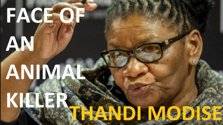 Speaker of the National Assembly and animal killer, Thandi Modise, pardoned by court | South Africa