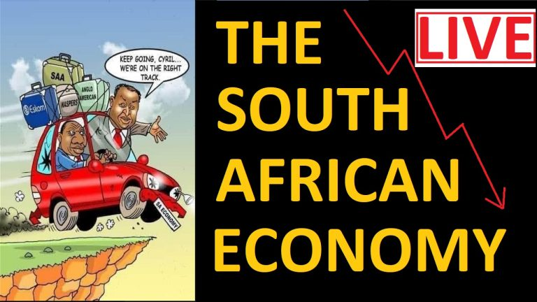LIVE: Dawie Roodt, economist, on where South Africa is headed