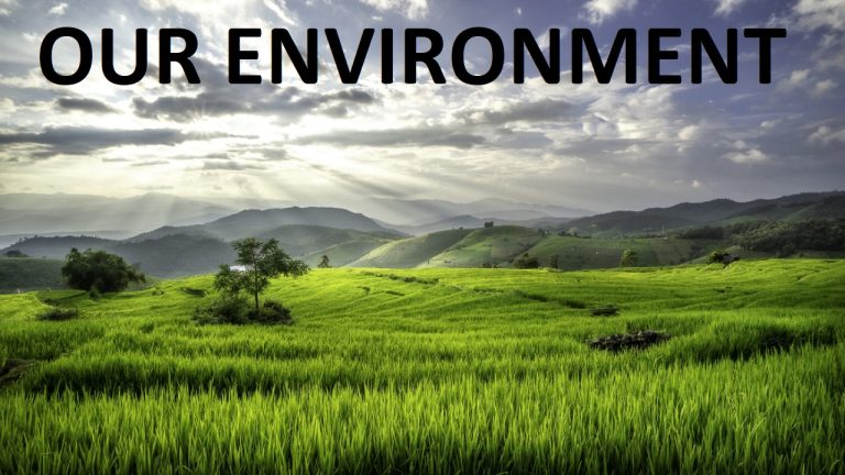LIVE: The environment, with a focus on the impact of the Chinese in Africa